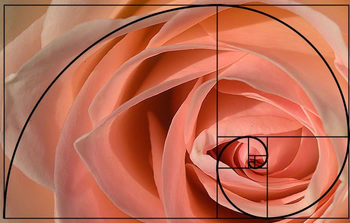 part 2 of 2 the question of why the golden ratio is important is answered by dailey haren. Black Bedroom Furniture Sets. Home Design Ideas
